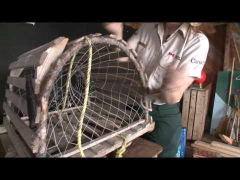Build a Lobster Trap - Newfoundland and Labrador, Canada