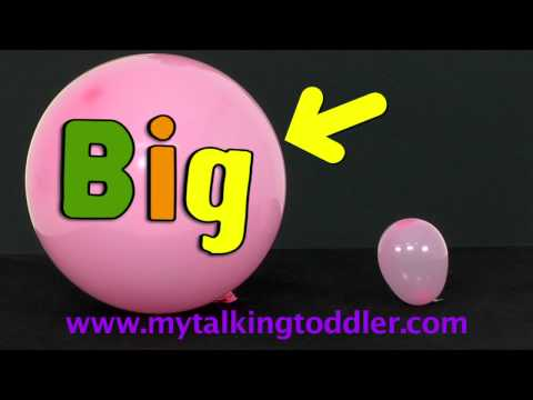 My Talking Toddler's P B & M - Beginning Speech