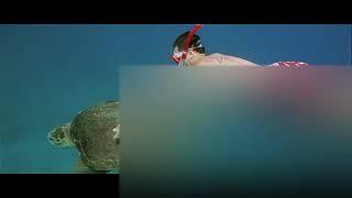 Me, Lara dutta hot bikini that interfere