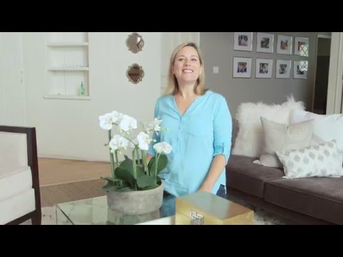 Lorri Dyner Bite-Sized Decorating Tip: Yes to Fake Flowers!