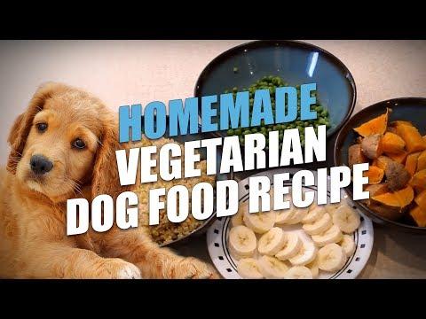 Homemade Vegetarian Dog Food Recipe (Simple to Make)