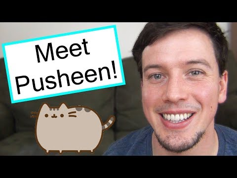 All About Pusheen, The Internet's Cutest Kitty!