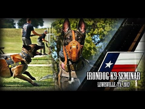 IronDogK9 Dallas Texas 2017