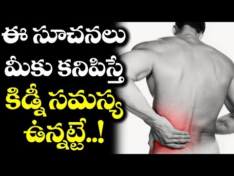 How To Know If We Are Having Kidney Problems? | Kidney Safety Tips | Health Updates | VTube Telugu