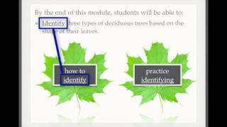 Aligning Learning Activities