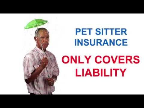 Is your Pet Sitter FULLY insured? What about Worker's Comp?