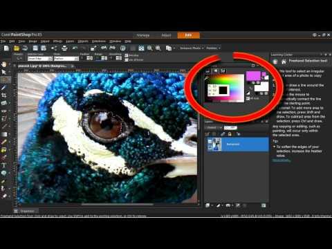The Color Changer Tool in Corel PaintShop Pro X5