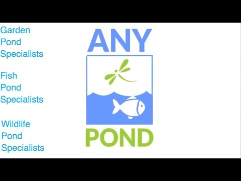 Garden Pond Specialists - Any Pond Limited