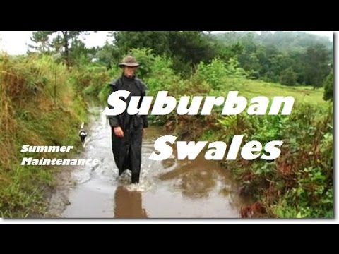 #Suburban #Swale Maintenance in the #Permaculture Food Forest