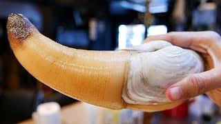 Download Japanese Street Food - GIANT GEODUCK CLAM Japan Seafood