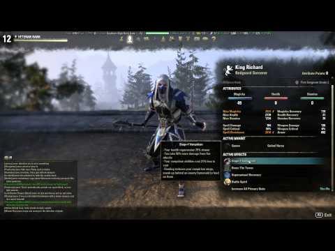 Guide  ESO Sorcerer Javelin Build Best Sorcerer Build?