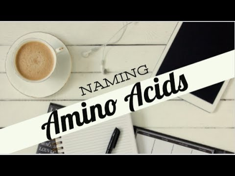 MCAT: Amino Acid Names, Organization and Mnemonics