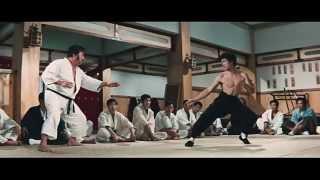 Bruce Lee Chinses Kung Fu [Video Clips] 李小龙腿法、双节棍与肌肉,以及其凶狠的眼神和神鬼般的吼叫