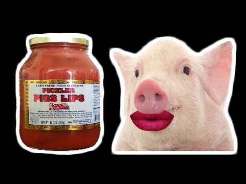 Let's Try Pickled Pig Lips! - Pickled Meat in a Jar! - WHAT ARE WE EATING?? - The Wolfe Pit