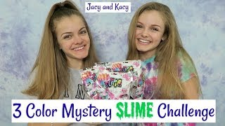 3 Color Mystery Slime Challenge ~ Jacy and Kacy