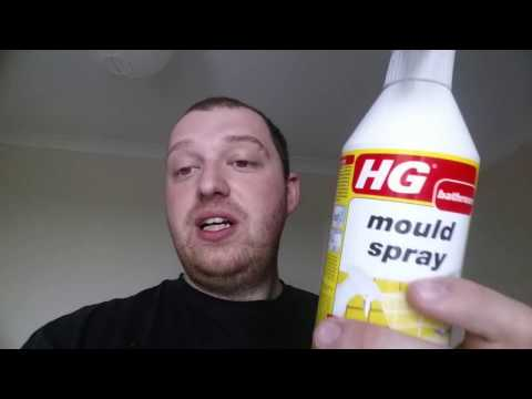 The Best Way I Found To Remove Mould!