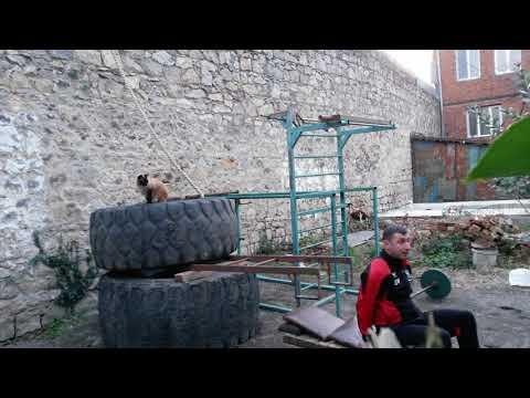 Tire bench press