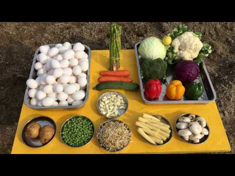 Cooking Vegetable Scrambled Eggs with 20 Different Vegetables and 200 Eggs - Healthy Indian Food
