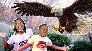 Shiloh vs GIANT EAGLE! - Shasha and Shiloh - Onyx Kids