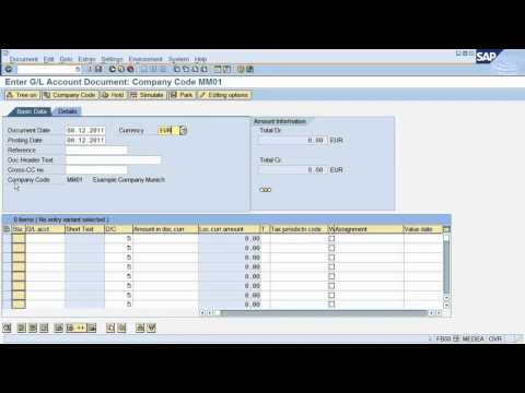 Fs2 Sap Tutorial How To Post A Document In Sap Financial Accounting