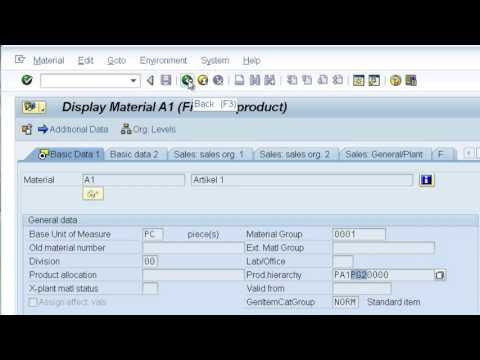 SAP CO-PA: characteristic derivation