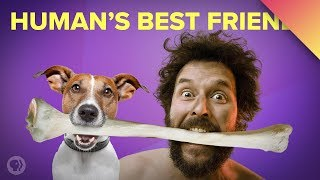 Dogs and Humans: A 30,000-Year Friendship (ft. MinuteEarth)
