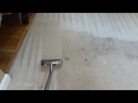 Cleaning heavily soiled carpets & making look like NEW again.
