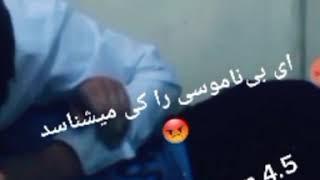 سكسي أفغاني