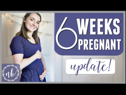 6 WEEKS PREGNANT | Scary Fainting Episode!