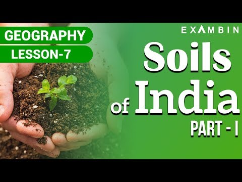 Soils of India - Part 1 - Indian Geography