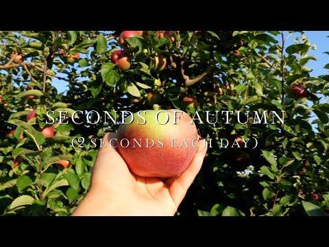 Seconds of Autumn