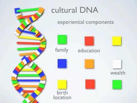 DiversityDNA: your unique cultural DNA profile