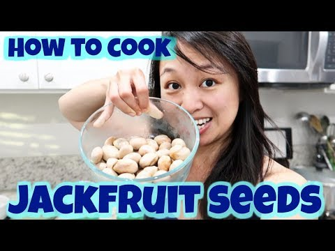 How to Cook Jackfruit Seeds - Easy Steps (They are Edible!)