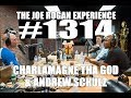 Joe Rogan Experience 1314 Charlamagne Tha God Andrew Schulz