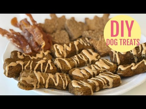 3 Top DIY DOG TREAT RECIPES Tested - With Puppy Taste Test I Food I How to Cook Craft & Kids