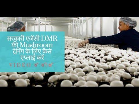 DMR main Mushroom training ke liye kaise apply karein | mushroom ki kheti main faayda |