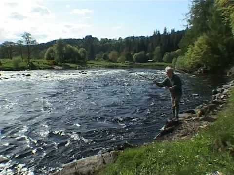 The Salmon and Trout Association