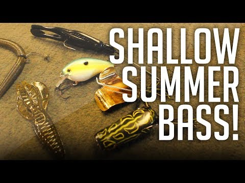 How To Catch Bass SHALLOW In The Dead Of Summer!