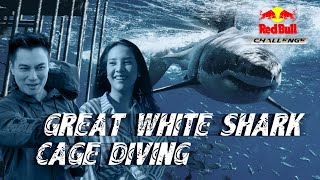 Red Bull Challenge Ep 02 Featuring Anya Geraldine Baim Wong Great White Shark Cage Diving
