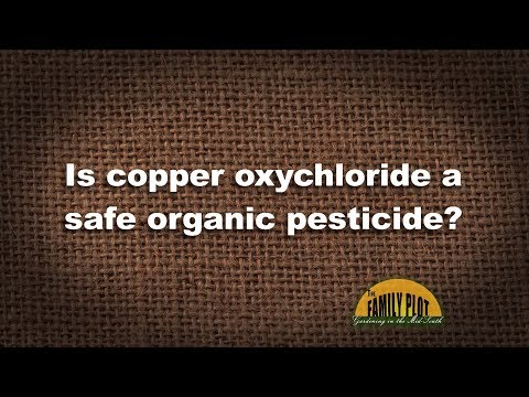 Q&A - Is copper oxychloride a safe organic pesticide?