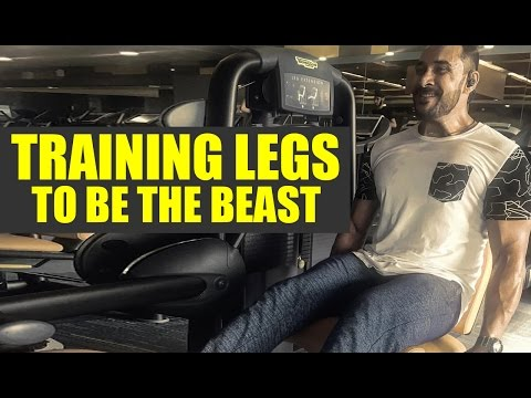 Training legs to be the beast