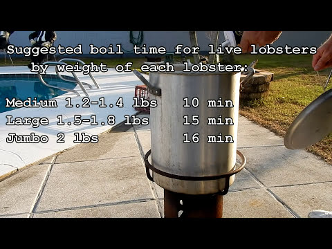 How to cook lobsters