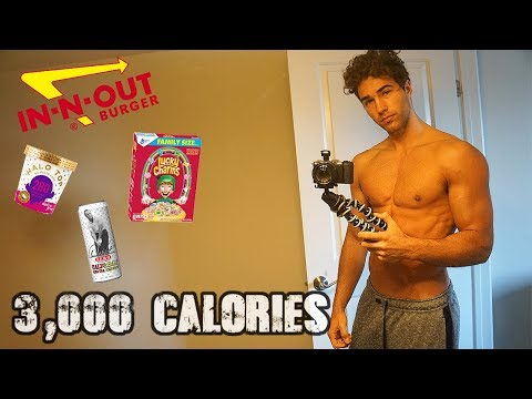 Nic Palladino | Full Day of Eating While Traveling (3,000 Calorie Cut)