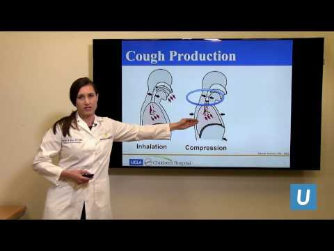 Evaluation of Chronic Cough in Children - Mindy Ross MD | UCLAMDCHAT Webinars