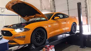 mustang gt lund racing tuner Videos - 9tube tv