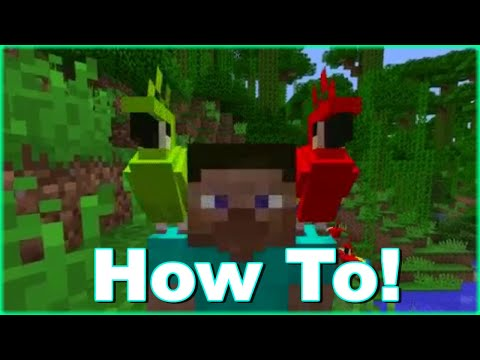 Minecraft|How To Make A Parrot Sit On Your Shoulder!!!|Xbox One,PS4|