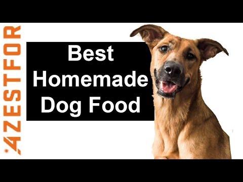 Best Homemade Dog Food Chicken & Potatoes 🐶🍗⭐