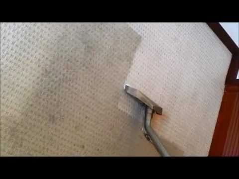 filthy carpet cleaning truro cornwall by Carpet Knights