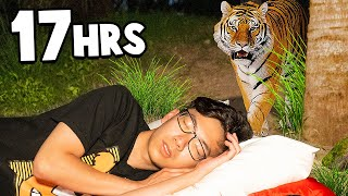 Overnight Survival Challenge In A ZOO!
