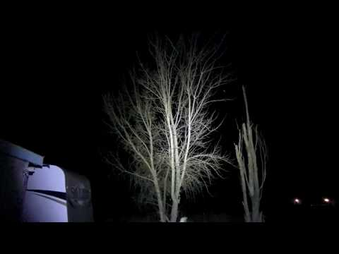 OLIGHT M2T WARRIOR 1200 Lumen Flashlight L2Survive with Thatnub